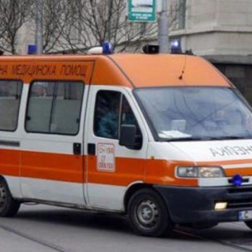 Peste 20 de sportivi au primit îngrijiri medicale după ce viespile i-au atacat la un concurs de alergare și ciclism în Bulgaria