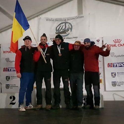 România se remarcă în competițiile importante de atelaje canine. Medalii la mondiale și europene