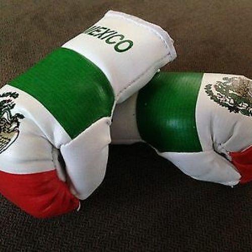 Mexicul va găzdui mai multe gale de box, în ciuda pandemiei de coronavirus